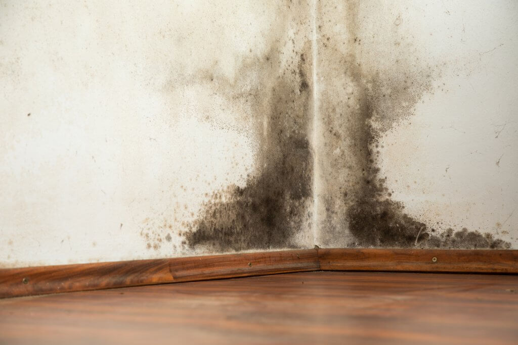 Water Damage Restoration Highland Beach FL
