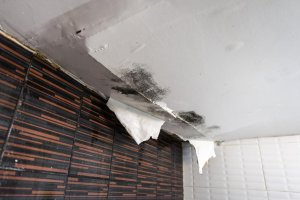 Commercial Water Removal West Palm Beach